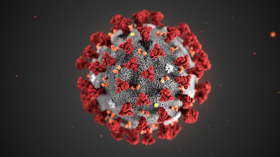 Coronavirus Italia svizzera